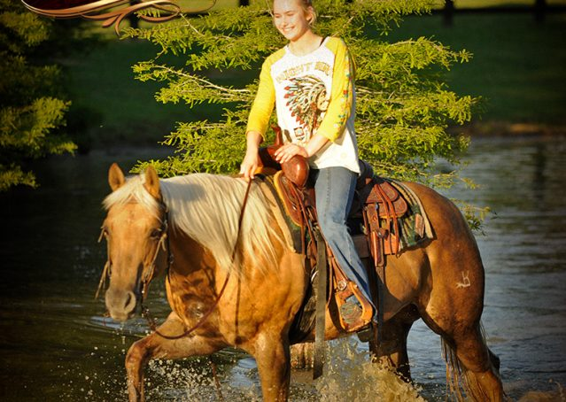 023-Angel-Palomino-Quarter-Horse-Mare-For-Sale