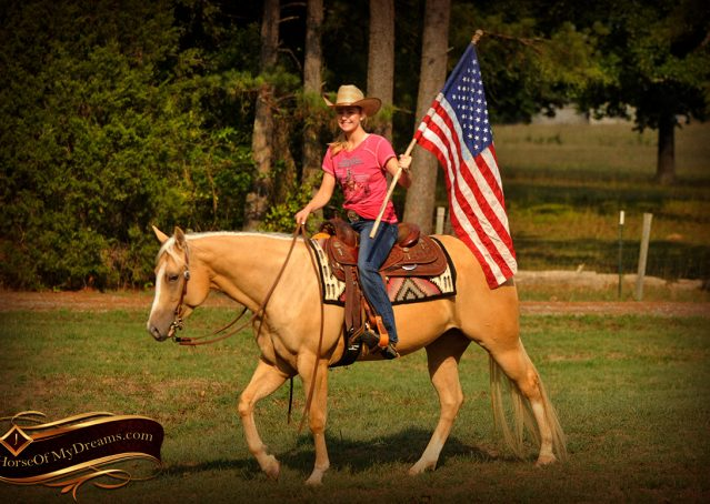 023-Chanel-Palomino-AQHA-Reining-mare-for-sale