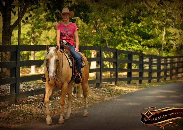 025-Chanel-Palomino-AQHA-Reining-mare-for-sale
