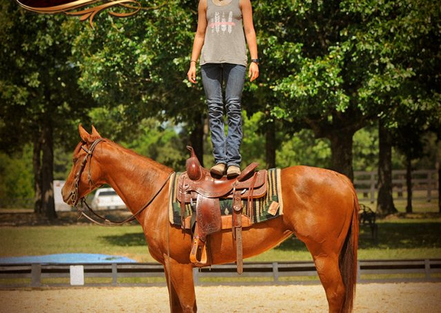 012-Sparkles-Sorrel-AQHA-Mare-For-Sale