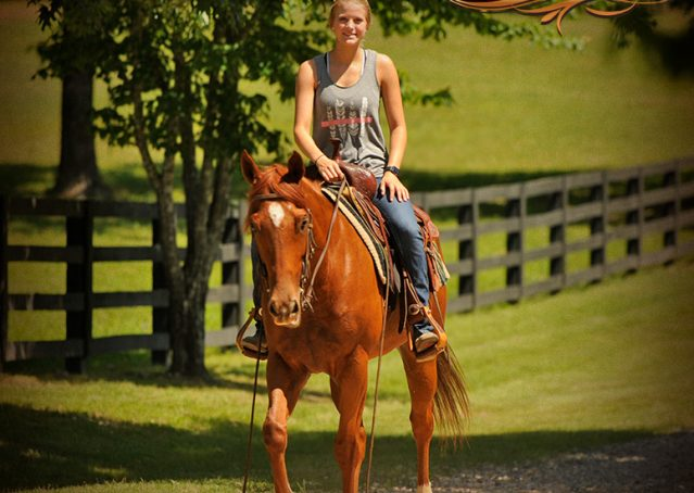 017-Sparkles-Sorrel-AQHA-Mare-For-Sale