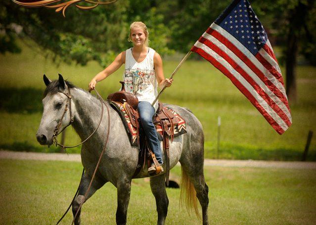 003-Steele-Gray-Quarter-Horse-Gelding-For-Sale