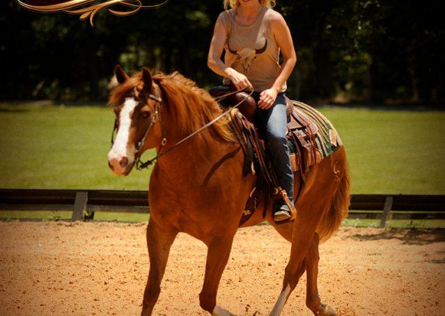 008-Remi-Sorrel-Quarter-Horse_Gelding-For-Sale