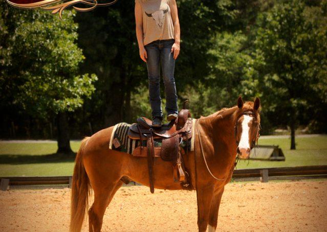 009-Remi-Sorrel-Quarter-Horse_Gelding-For-Sale