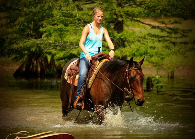 016-Jordan-Bay-roan-Gelding-For-Sale
