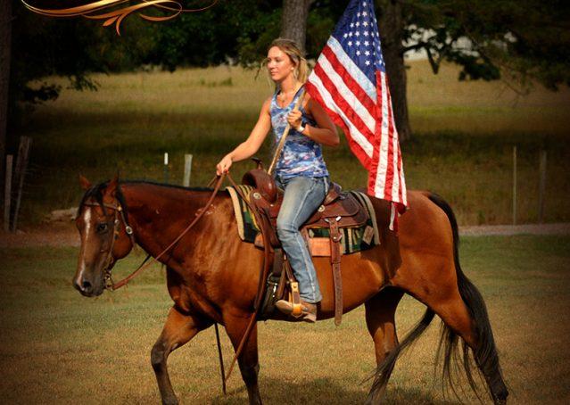 004-Indie-Bay-Quarter-Horse-Gelding-For-Sale