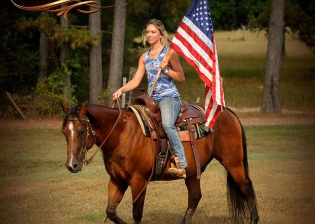 005-Indie-Bay-Quarter-Horse-Gelding-For-Sale