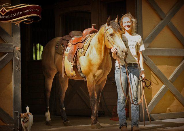 005-Murphy-Buckskin-Quarter-Horse-Gelding-For-Sale