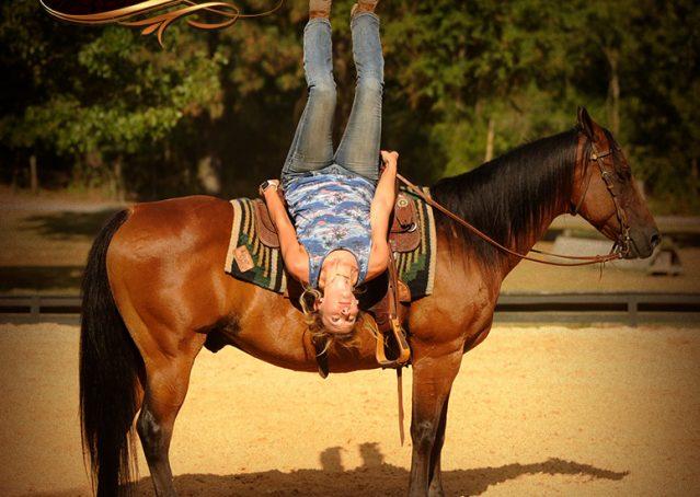 008-Indie-Bay-Quarter-Horse-Gelding-For-Sale
