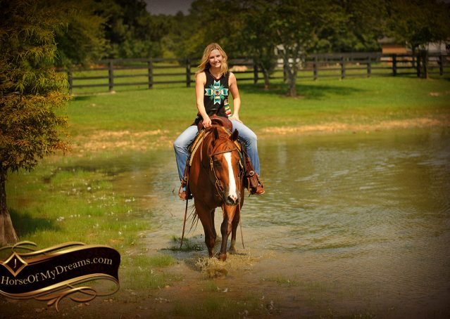 016-Cruz-Sorrel-AQHA-Gelding-For-Sale