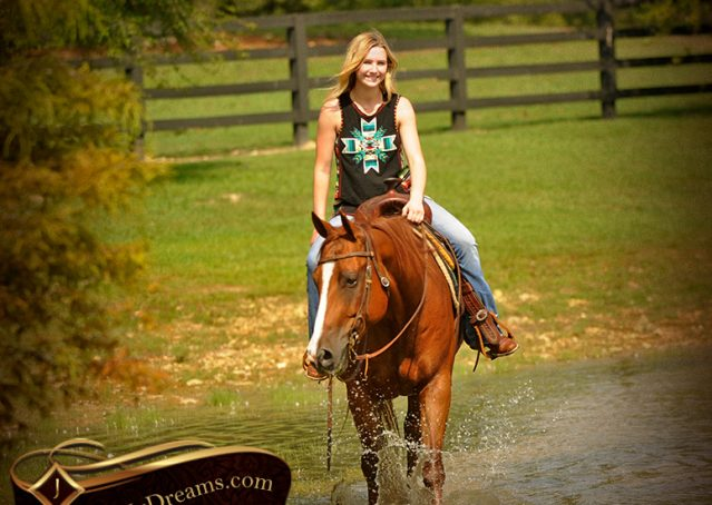 017-Cruz-Sorrel-AQHA-Gelding-For-Sale