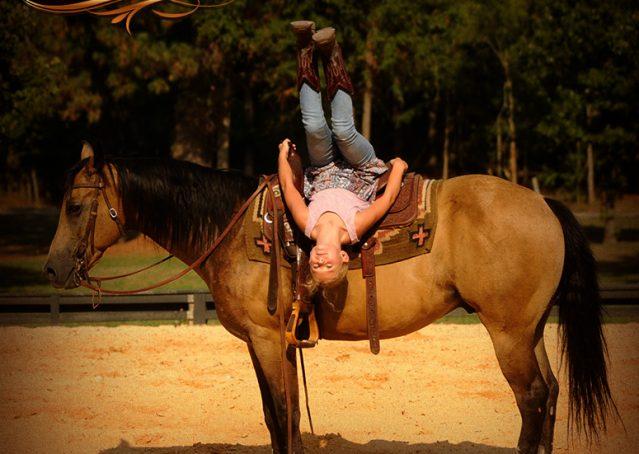 018-Murphy-Buckskin-Quarter-Horse-Gelding-For-Sale