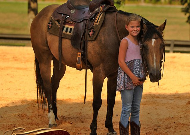 019-Murphy-Buckskin-Quarter-Horse-Gelding-For-Sale