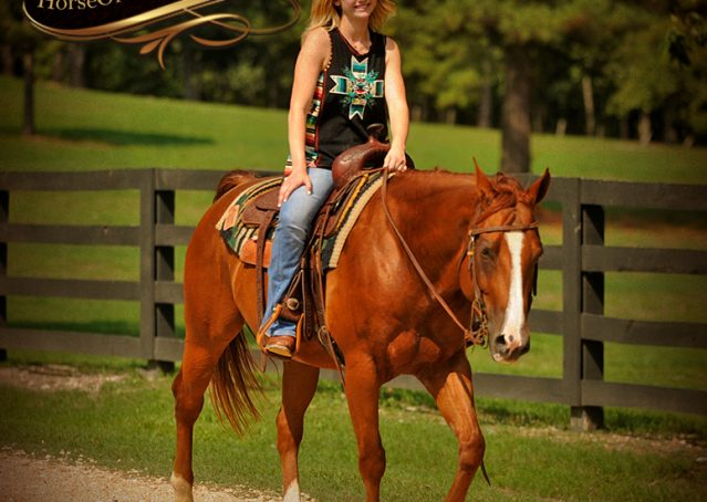 020-Cruz-Sorrel-AQHA-Gelding-For-Sale