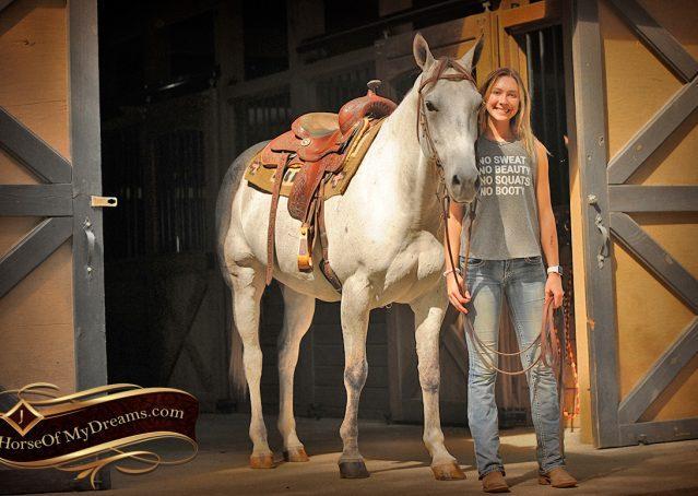 005-Gracie-Gray-Quarter-Horse_Mare-For-Sale