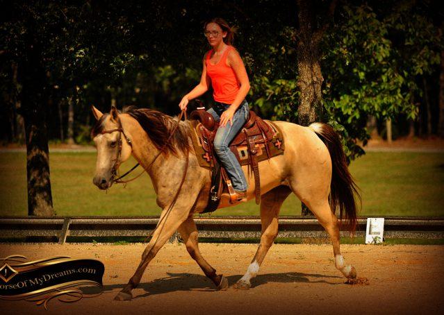012-Gunsmoke-Buckskin-Quarter-Horse-Gelding