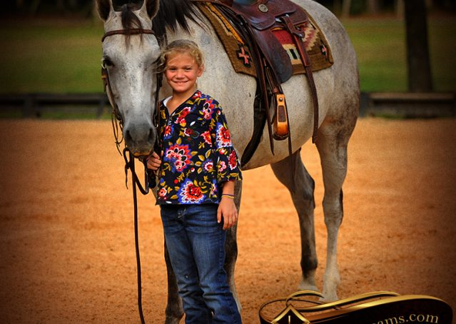 013-Gracie-Gray-Quarter-Horse_Mare-For-Sale