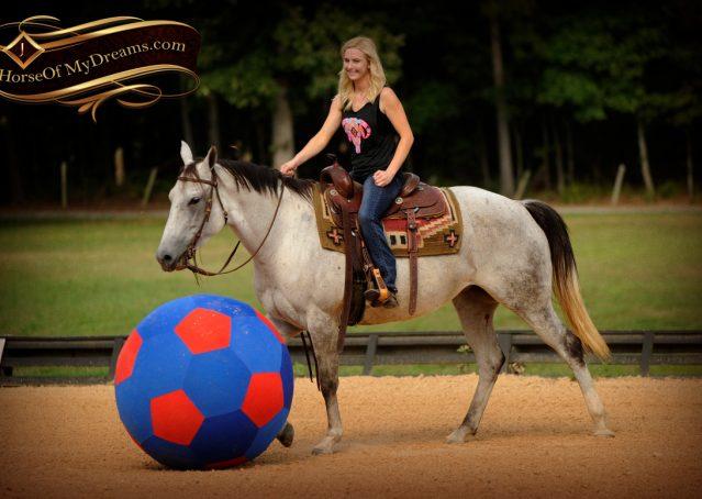 015-Gracie-Gray-Quarter-Horse_Mare-For-Sale