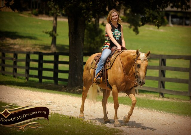 016-Oakley-Palomino-Quarter-Horse-Gelding-For-Sale