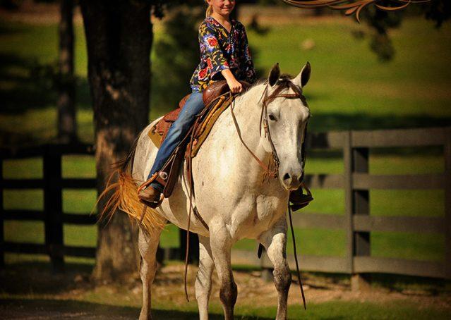 017-Gracie-Gray-Quarter-Horse_Mare-For-Sale
