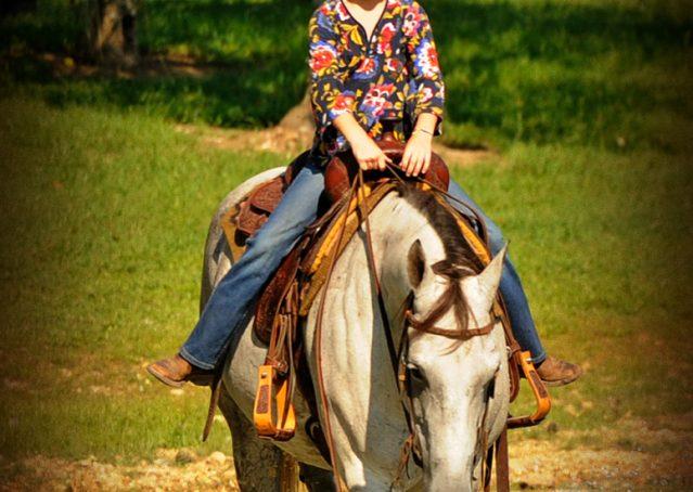 019-Gracie-Gray-Quarter-Horse_Mare-For-Sale