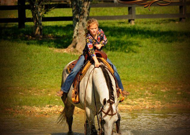 020-Gracie-Gray-Quarter-Horse_Mare-For-Sale
