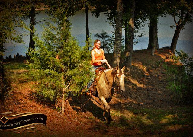 023-Gunsmoke-Buckskin-Quarter-Horse-Gelding