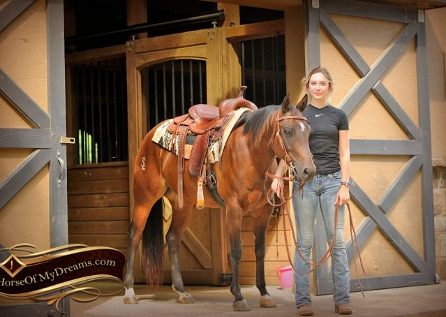 005-Sabrina-AQHA-Sophisticated-Catt-Bay-Mare-For-Sale