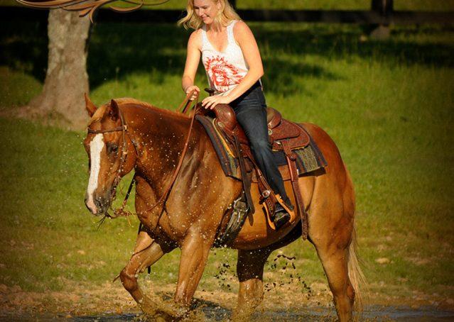 022-Noah-Sorrel-Flaxen-mane-quarter-horse-for-sale