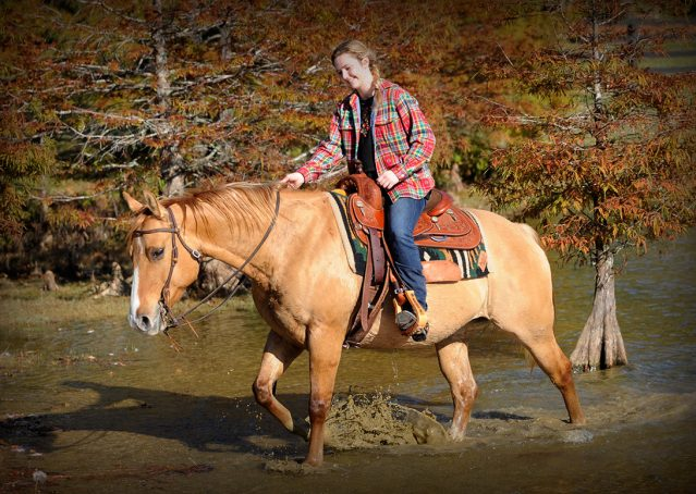 015-Torch-Red-Dun-AQHA-Gelding-For-Sale