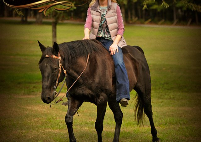 024-Frankie-Black-AQHA-Gelding-for-Sale