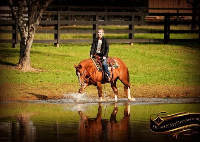 027-Fancy-Sorrel-AQHA-mare-for-sale