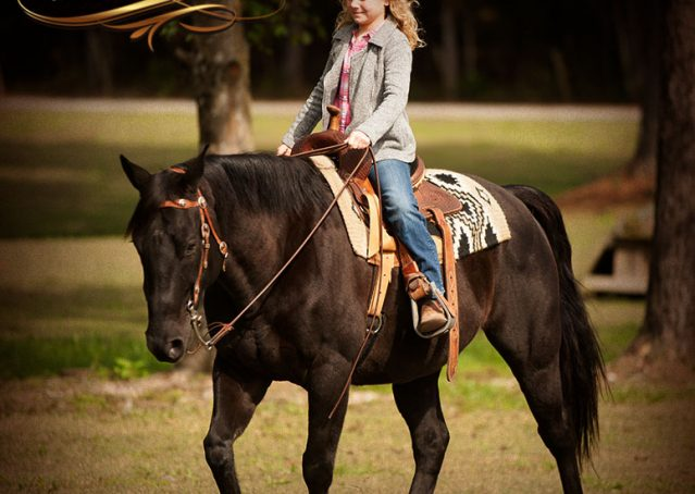 027-Frankie-Black-AQHA-Gelding-for-Sale