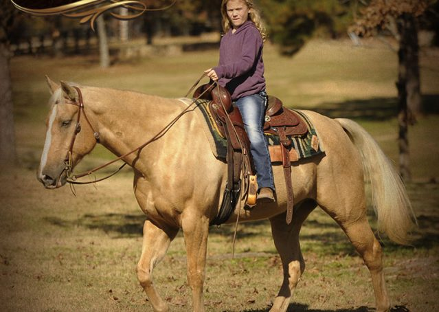 014-Jessy-AQHA-Palomino-Gelding-For-Sale