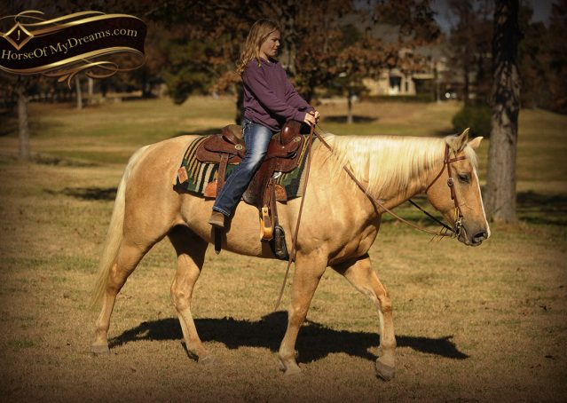 015-Jessy-AQHA-Palomino-Gelding-For-Sale