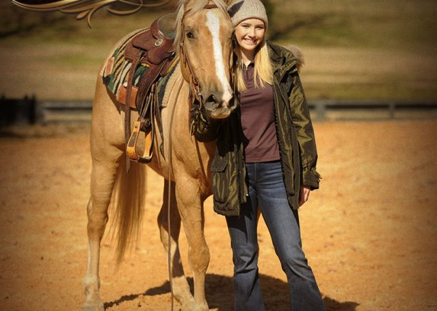 020-Jessy-AQHA-Palomino-Gelding-For-Sale