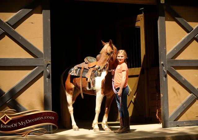 001-Sarah-Lou-Paint-Pony-Mare-For-Sale