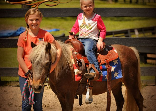 004-Peppermint-Chocolate-Palomino-kids-Pony-Mare-For-Sale