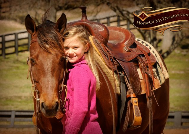 012-Wagner-Bay-AQHA-Gelding-For-Sale