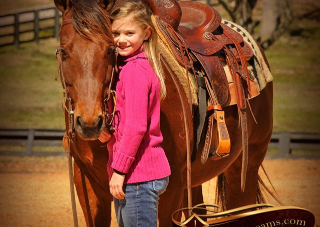 013-Wagner-Bay-AQHA-Gelding-For-Sale
