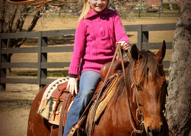 024-Wagner-Bay-AQHA-Gelding-For-Sale
