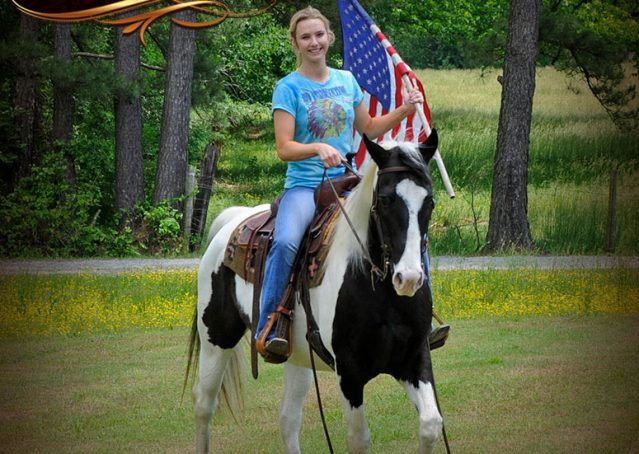 004-Chex-Black-Tobiano-Paint-Horse-Gelding-For-Sale