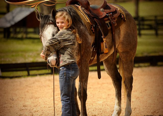010-Bugsy-Grey-AQHA-Gelding-For-Sale