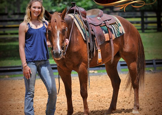 010-Dallas-APHA-Red-Dun-Gelding-For-Sale