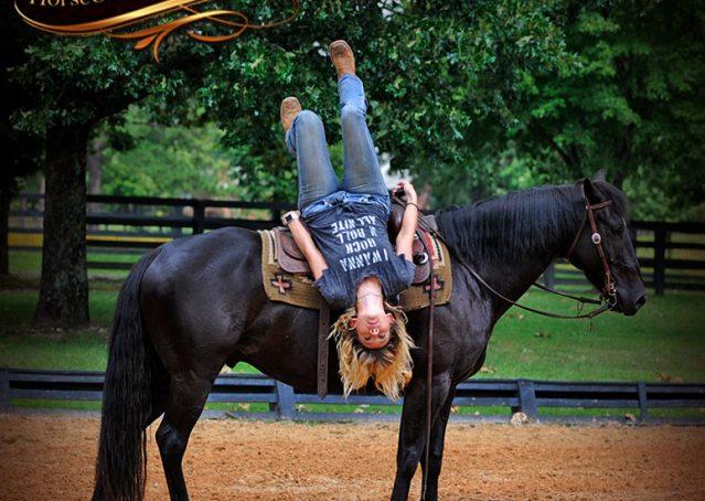 010-Winston-AQHA-Black-Quarter-Horse-gelding-for-sale