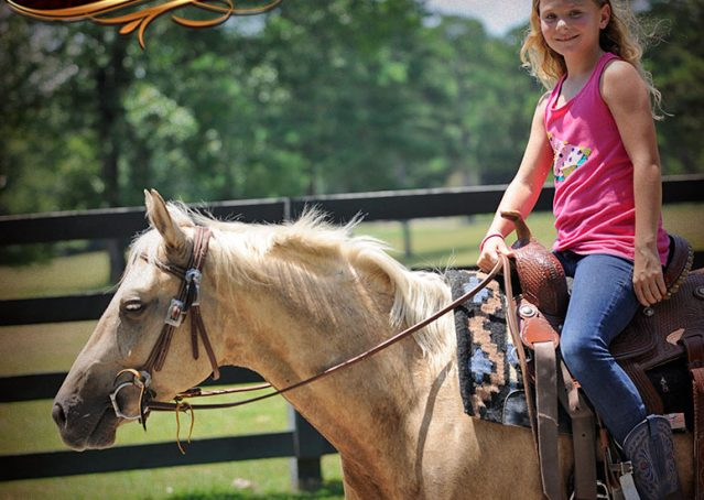 020-Sol-AQHA-Palomino-Gelding-Palo-Duro-Cat-For-Sale