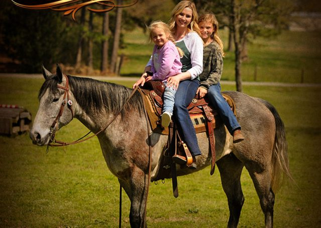 021-Bugsy-Grey-AQHA-Gelding-For-Sale