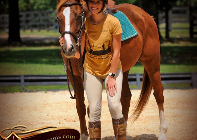 011-Jackson-Chestnut-thoroughbred-gelding-for-sale