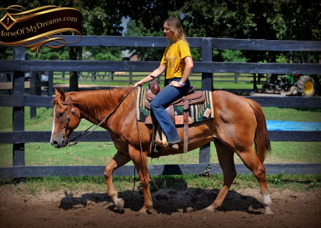 012-Ray-AQHA-Sorrel-Doc-O'lena-gelding-for-sale