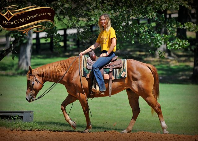 016-Ray-AQHA-Sorrel-Doc-O'lena-gelding-for-sale